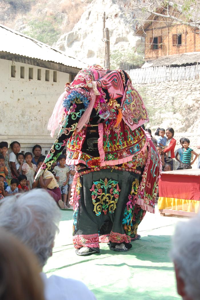 Masked elephant