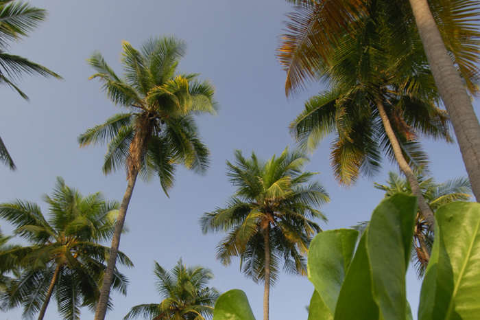 Mumbai, Goa & Gujerat